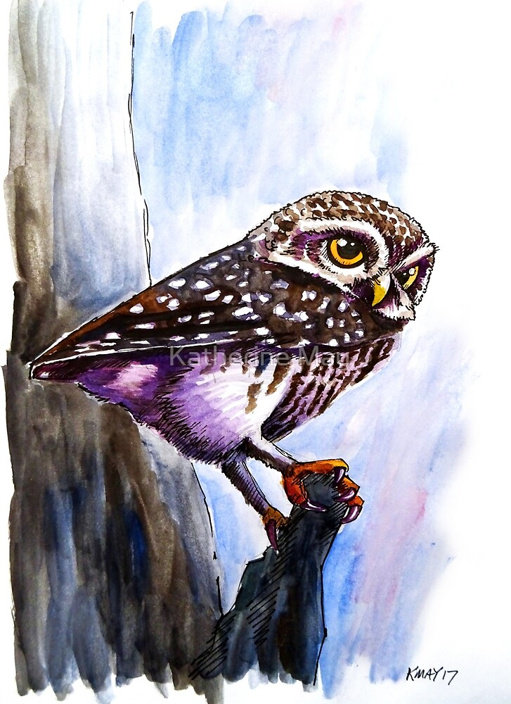 Owl Glance by Katherine May