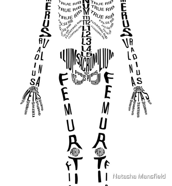Typographical Skeleton by Natasha Mansfield