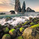 The Guardians (Ribeira da Janela / Madeira / Portugal) by Dirk Wiemer