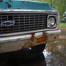 Old Chevy Truck in the Rain by katreneekittel