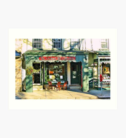 Country Charm  ( Lambertville Village  Storefront ) Art Print