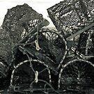 """Trapped"" by Bradley Shawn  Rabon"