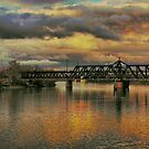 Bridge Along the Sacramento by Barbara  Brown