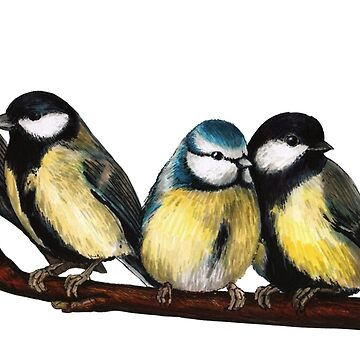 Birds on a branch  by linnw