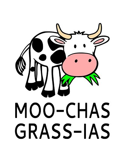 moo chas grass ias muchas gracias posters by coolfuntees redbubble