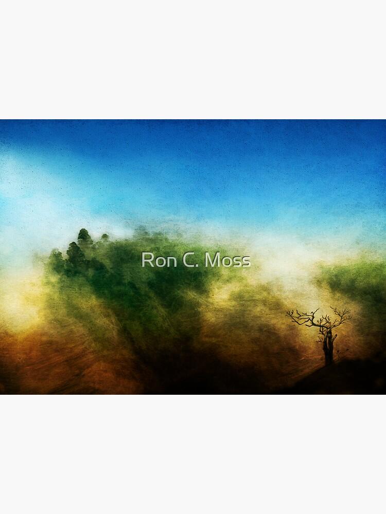 Rainbow Mountain by ronmoss
