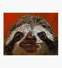 Sloth Photographic Print