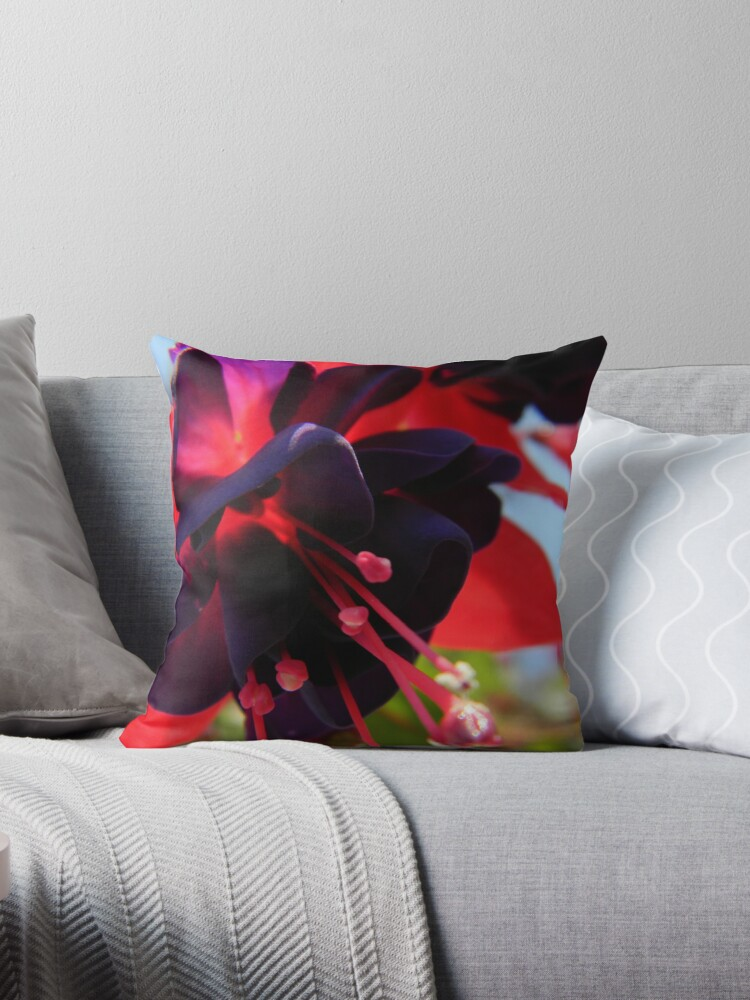 Fully Bloomed Red and Purple Fuchsia by CapeCodGiftShop