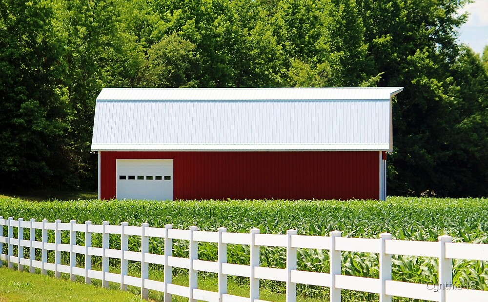 Red Barn And White Fence by Cynthia48