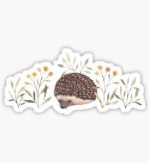 Little Hedgehog Sticker