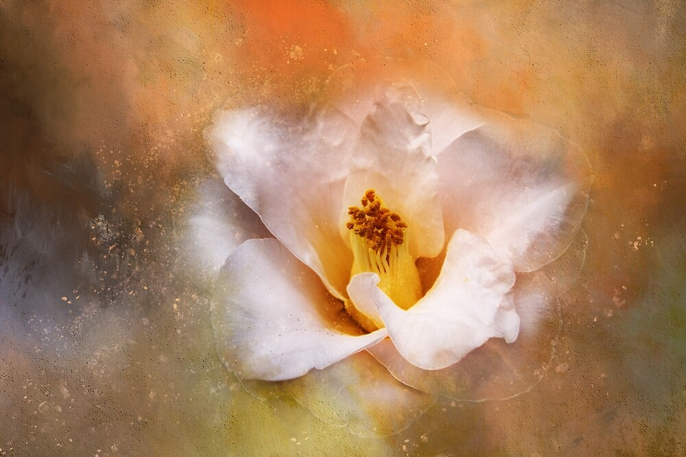 Cosmic Camellia by TerryIKON