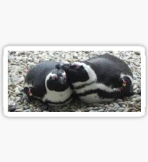 Penguins of a Feather Sticker