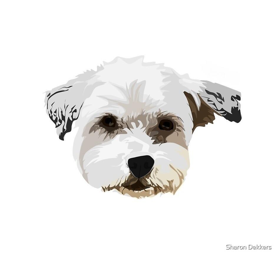 Dog by Sharon Dekkers
