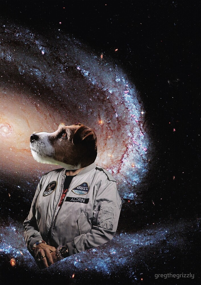 Dog in Space by gregthegrizzly