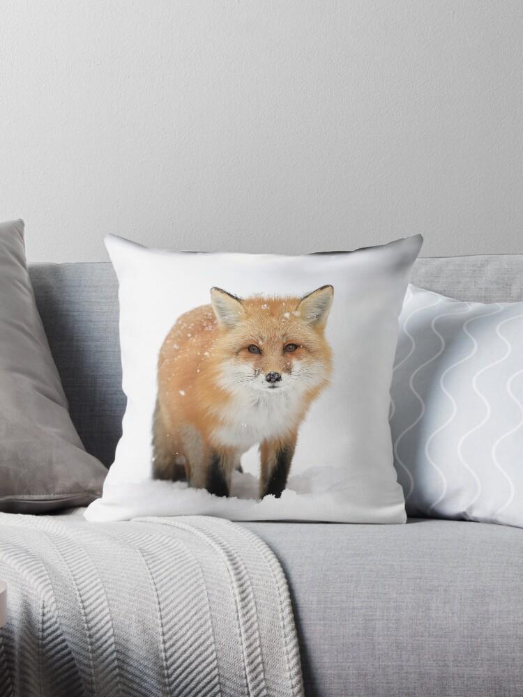 Red Fox by mlorenz