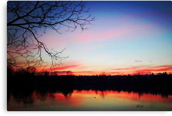 Sunset lake tree scenery by ramisdesigns