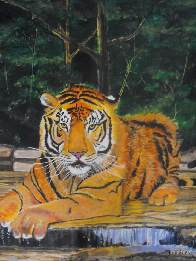 The Bathing Tiger by jim shaw