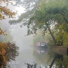Autumn on the Basingstoke canal by Stephen Liptrot
