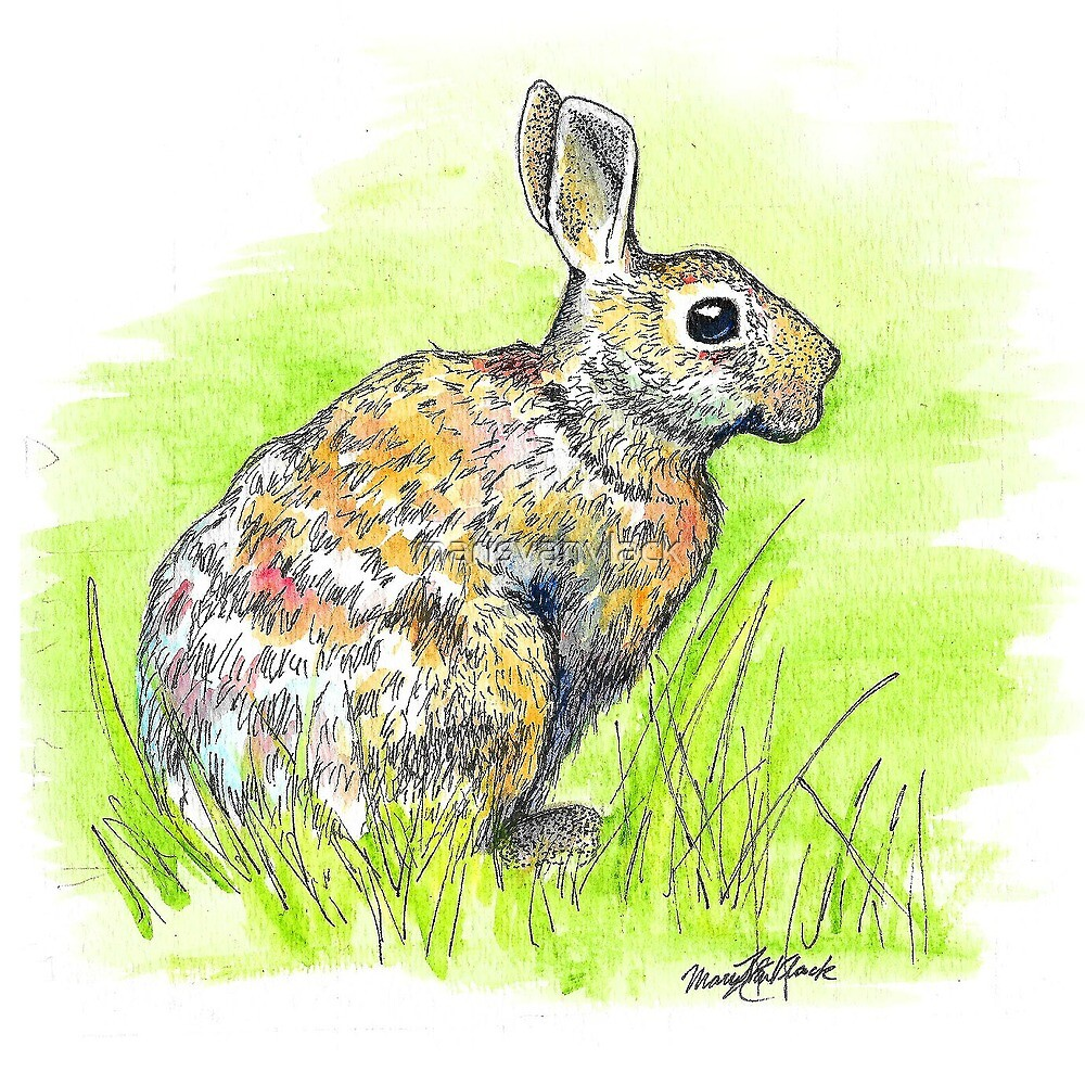 Rabbit Watercolor Painting by marisvanvlack