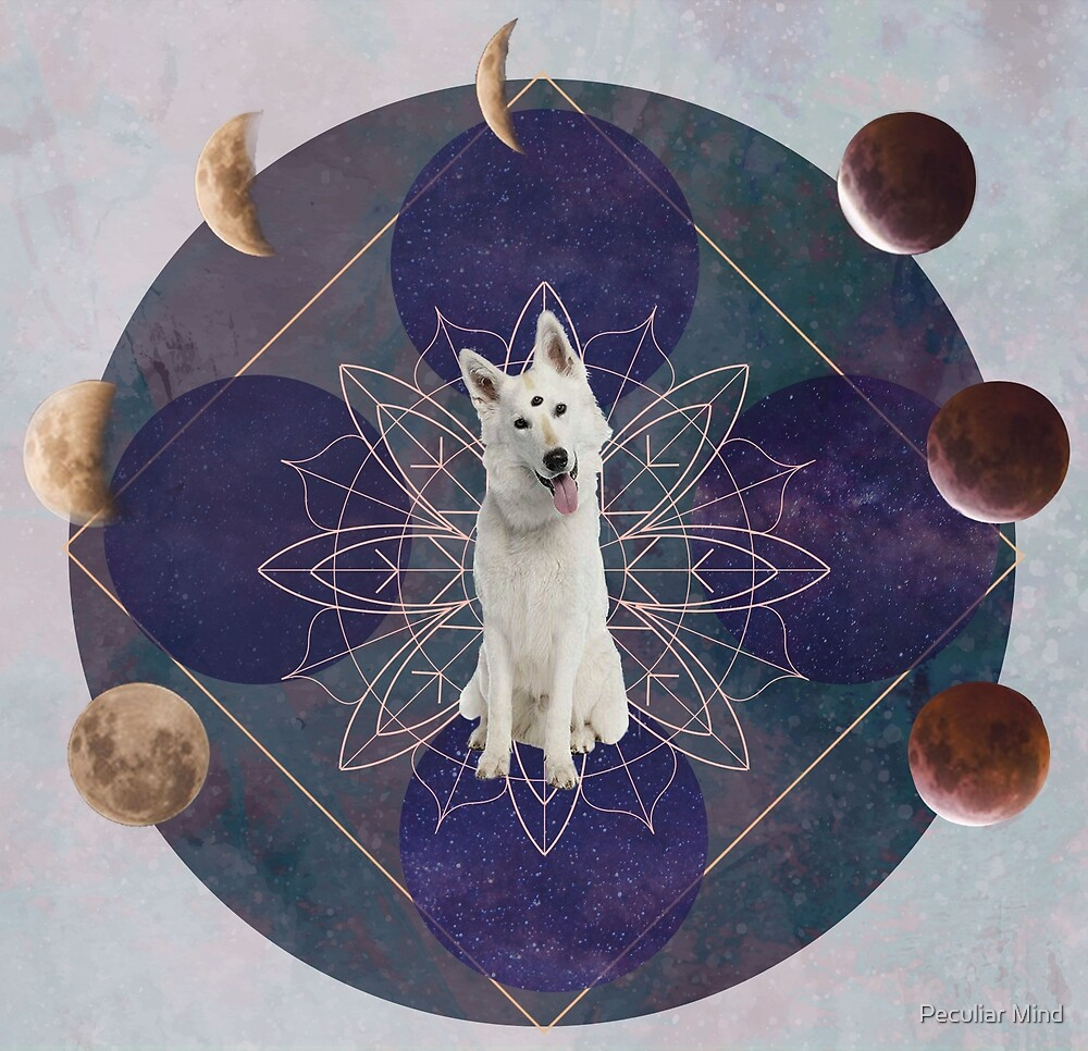 DoogyMystic Dog  by Alizée Laurence