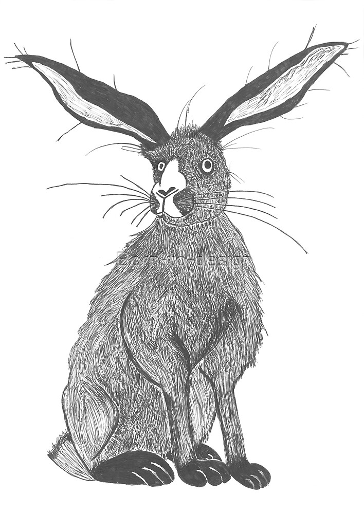 Hare rabbit by Born-to-design