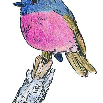 Pink Robin - Bird 1 by RiverbyNight