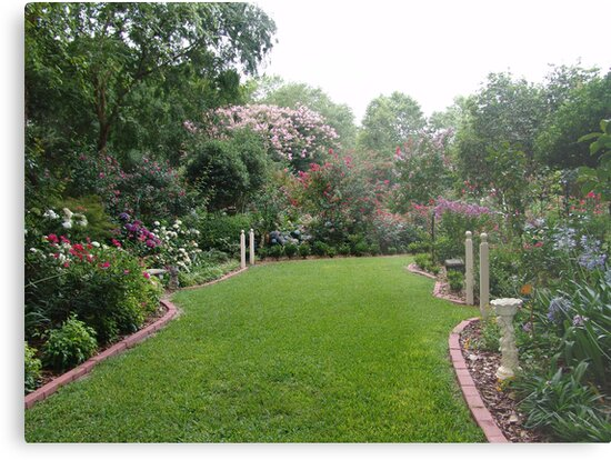 The magic of June's Garden by May Lattanzio