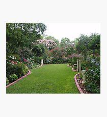 The magic of June's Garden Photographic Print