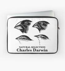 Charles Darwin - Natural Selection Laptop Sleeve