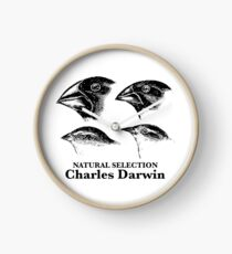 Charles Darwin - Natural Selection Clock