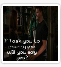 Seeley Booth Quote 2 Sticker