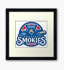 tennessee smokies Framed Print