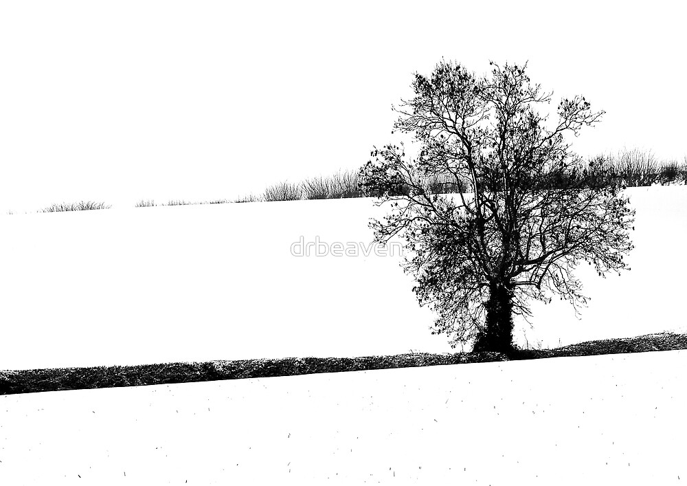 Tree In The Snow by drbeaven