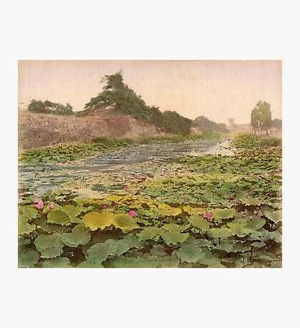 View of Tokyo Castle Photographic Print