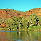 Ord River, Kununurra, Western Australia (Y) by Adrian Paul