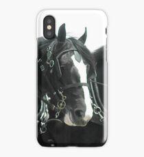 Shire iPhone Case/Skin