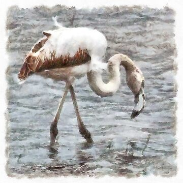 Knee Deep Flamingo Watercolor  by taiche