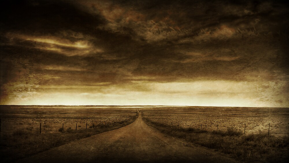 The Long Road by John Salisbury