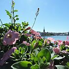 Stockholm Through The Flowers (Pink) by CreativeEm