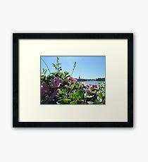Stockholm Through The Flowers (Pink) Framed Print