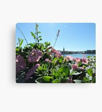 Stockholm Through The Flowers (Pink) Canvas Print