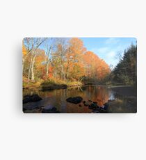 Autumn Brook Reflections - Nova Scotia Canada Metal Print