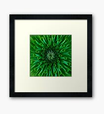 Green Closeup Framed Print
