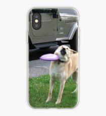 Vinilo o funda para iPhone Perro Frisbee