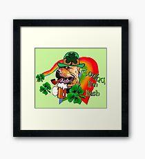 American Pit Bull Terrier Saint Patricks Day Framed Print