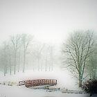 Snow Bridge by Polly Peacock