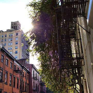 Gay Street - Green and Sun by amandavontobel