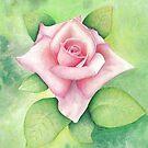 Rose by MadameCat-Art