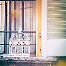 Bird cage on window sill by Silvia Ganora