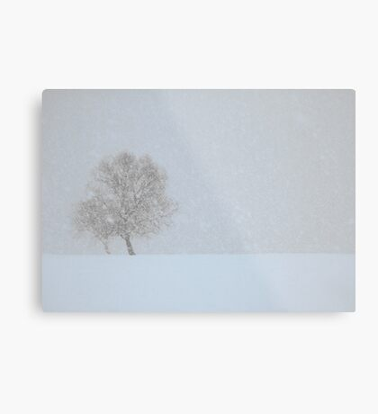 Winter seaside Metal Print